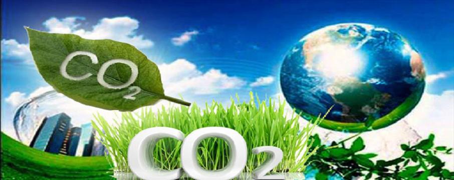sera-gaz%C4%B101.png