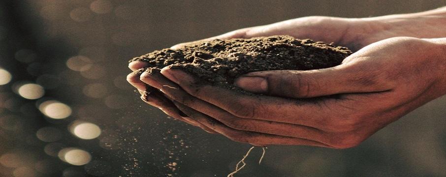İklim Değişikliğini Engellemek ve Toprağı Korumak Elimizde!