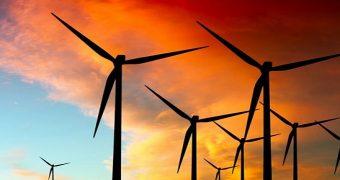 Kaktüs Rüzgar enerji Santrali