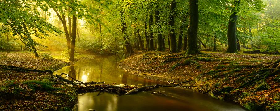 Kanunda Değişiklik İle Su Alanlarına Enerji Santrali Kurulması İzni Görüşülüyor