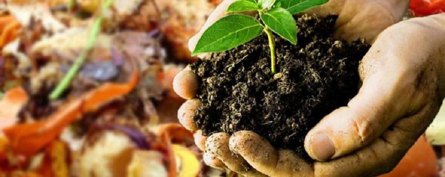 biyokütle enerjisi organik atıklar