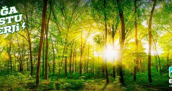 ck enerji doğa dostu enerji