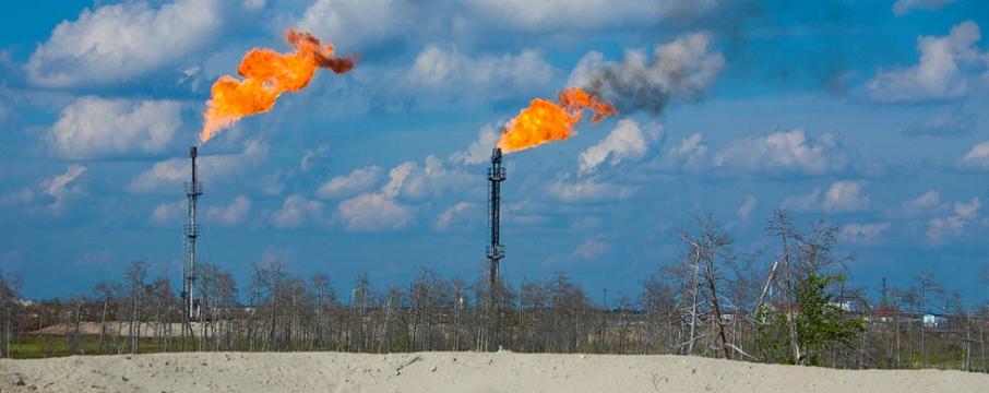 fatih dönmez doğal gaz