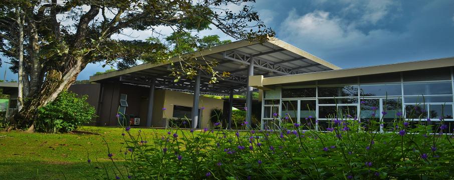 yeşil bina sertifikasyon sistemleri binalarda enerji verimliliği