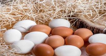 yumurta enerji depolama