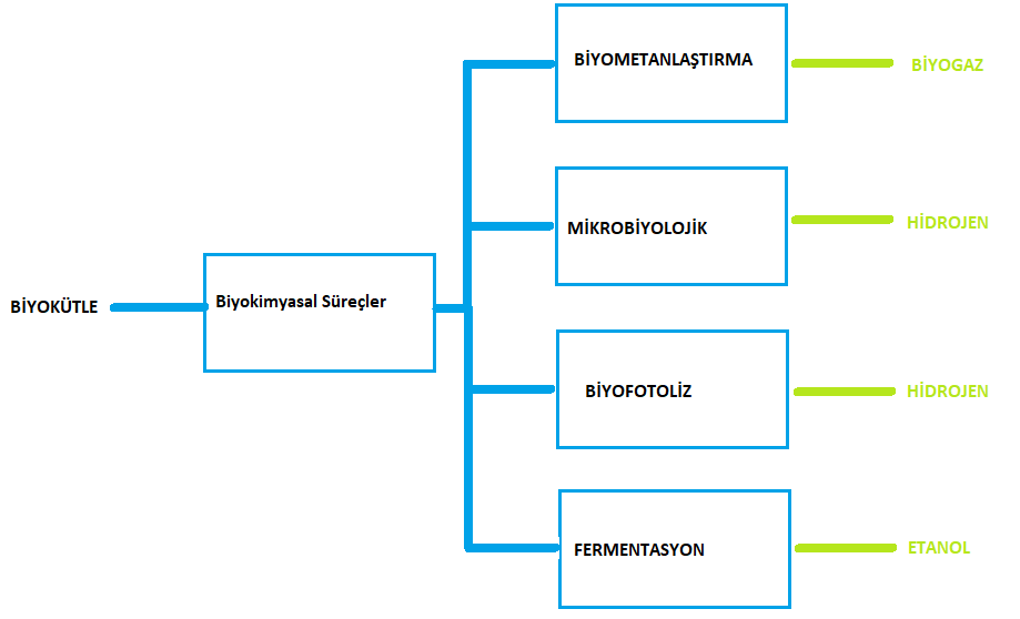 biyokütle enerjisi