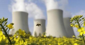 nükleer enerji ve iklim