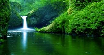 saski doğal kaynak suyu