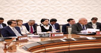 Orta Asya Bölgesel Ekonomik İşbirliği (CAREC) Enerji Bakanları Birinci Toplantısı