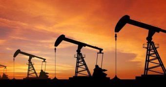 petrol nedir?