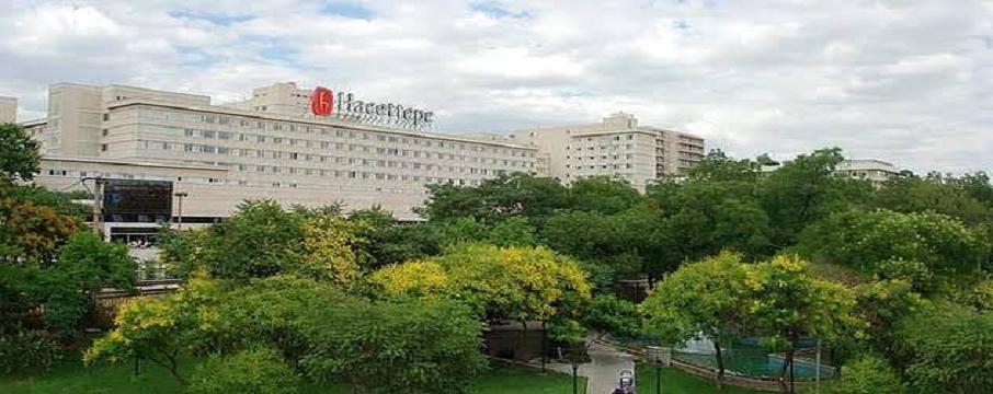 hacettepe üniversitesi öğretim görevlisi ilanı